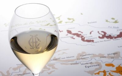 Still Wines from Champagne – Fizz's Final Frontier